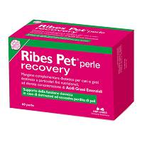 RIBES PET RECOVERY 60PRL