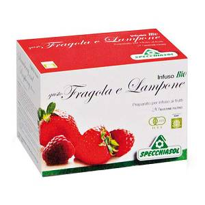 INFUSO FRAGOLA/LAMPONE 20FILT